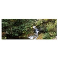 Waterfall in a forest Robert H. Treman State Park  Poster