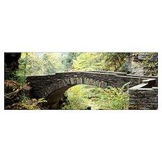 Arch bridge in a forest Robert H. Treman State Par Poster