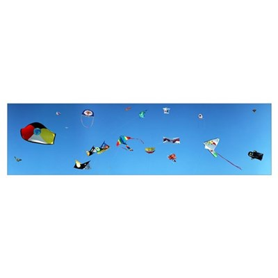 Low angle view of kites flying Bouches du Rhone Fr Poster