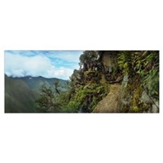 Inca Trail at the mountainside Machu Picchu Cusco  Poster