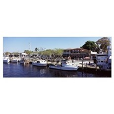 Boats moored at a harbor Tarpon Springs Pinellas C Poster
