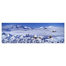Frozen lake in front of a mountain range Black Mou Poster