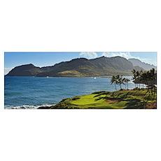 Palm trees in a golf course, Kauai Lagoons, Kauai, Poster