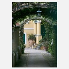Lanterns hanging in a garden, Capri, Naples, Campa