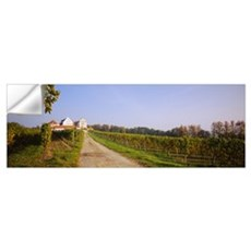 Dirt Road Along A Vineyard, Lake Constance, German Wall Decal