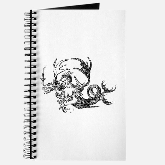 Durer Mermaid Journal