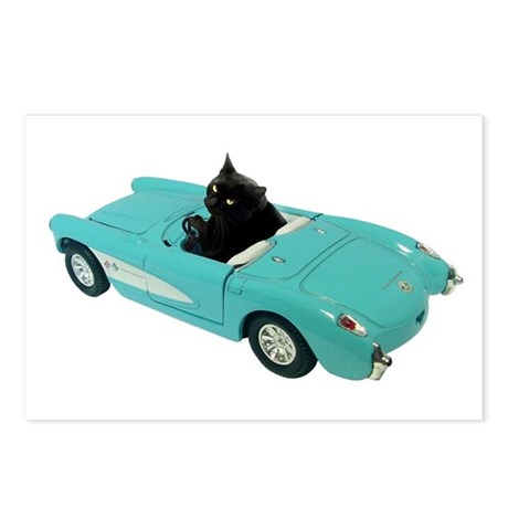 Cat Driving Car Postcards (Package of 8)