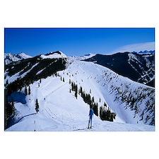 High angle view of skiers skiing, Vail Ski Resort,