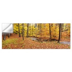 Stream flowing through a forest, Emery Park, East Wall Decal