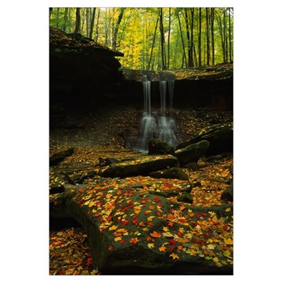 Waterfall in a forest, Blue Hen Falls, Cuyahoga Va Poster