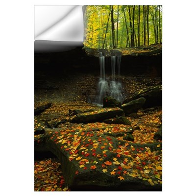 Waterfall in a forest, Blue Hen Falls, Cuyahoga Va Wall Decal
