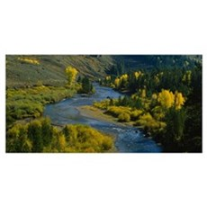 High angle view of a river in the forest, Blue Riv Poster