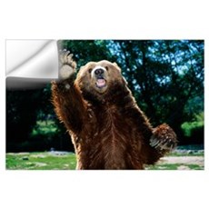 Grizzly Bear On Hind Legs Wall Decal