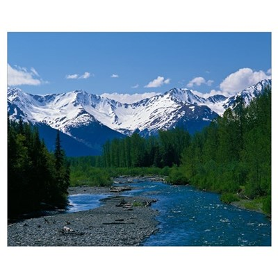 Chugach Mountains, running stream, summer, Alaska Poster