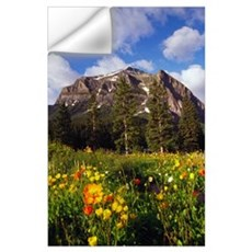 Poppies and wildflowers blooming in front of mount Wall Decal