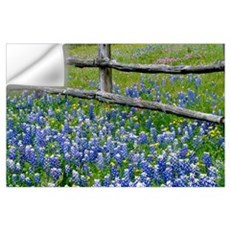 Bluebonnet flowers blooming around weathered wood Wall Decal