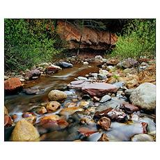 Rocky west fork of Oak Creek, Oak Creek Canyon, Co Poster