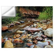 Rocky west fork of Oak Creek, Oak Creek Canyon, Co Wall Decal