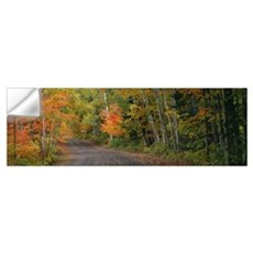 Road passing through a forest, Keweenaw County, Ke Wall Decal