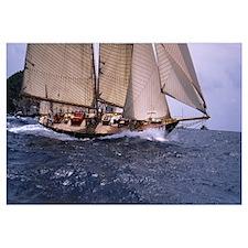 Sailboat in the sea, Schooner, Antigua, Antigua an