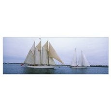 Sailboats in the sea, Narragansett Bay, Newport, N Poster