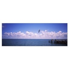 Pier over the sea, Fort De Soto Park, Tampa Bay, G Poster