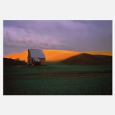 Barn in a field at sunset, Palouse, Whitman County