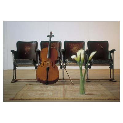 Cello leaning on attached chairs Poster