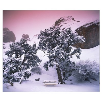 Empty bench under snow covered trees, Arches Natio Poster