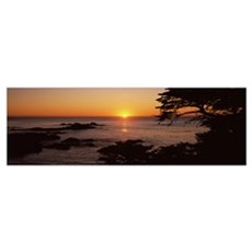 Sunset over the sea, Point Lobos State Reserve, Ca Poster