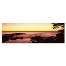 Sea at sunset, Point Lobos State Reserve, Carmel,  Poster