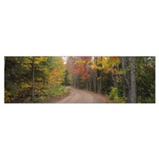 Dirt road passing through autumn forest, Keweenaw Poster