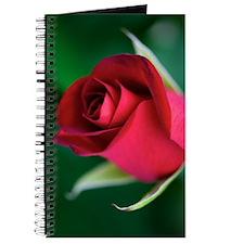 Red Rosebud Journal