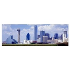 Dallas TX Poster