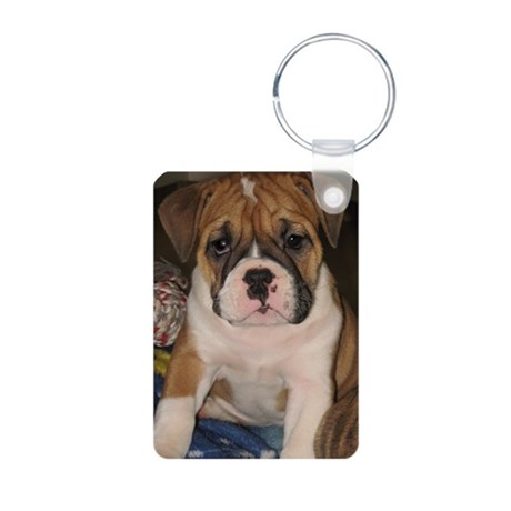 Fawn Bulldog Puppy Aluminum Photo Keychain