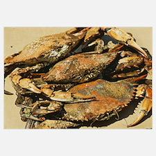 Close-up of crabs (Cancer Pagurus), Maryland