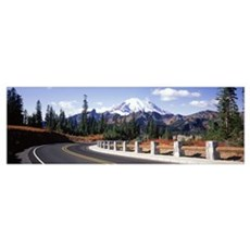 Curved Road Mt Rainier National Park WA Poster