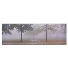 Trees and Bench in Fog Schleissheim Germany Poster