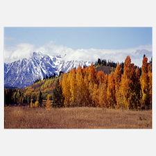 Autumn Grand Teton National Park WY