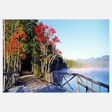 Chocorua Lake White Mountains National Forest NH