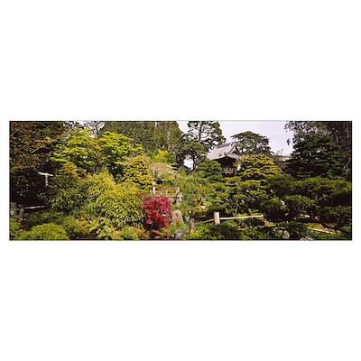 Cottage in a park, Japanese Tea Garden, Golden Gat Poster