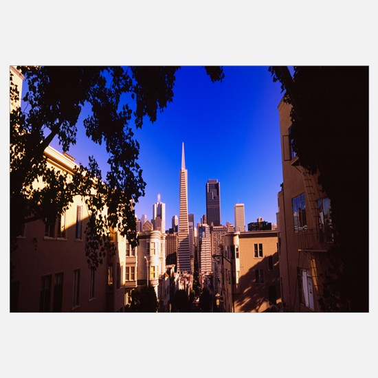 Buildings in a city, Telegraph Hill, Transamerica