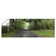 Trees on both sides of a road, Chestnut Ridge Coun Wall Decal