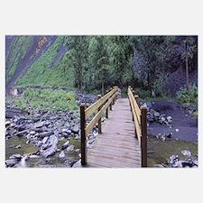 Footbridge across a stream, Taughannock Creek, Tau