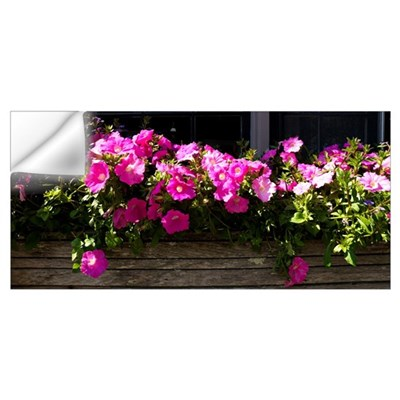 Flowers in a window box, Straight Wharf, Nantucket Wall Decal