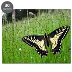 Anise Swallowtail Butterfly Puzzle