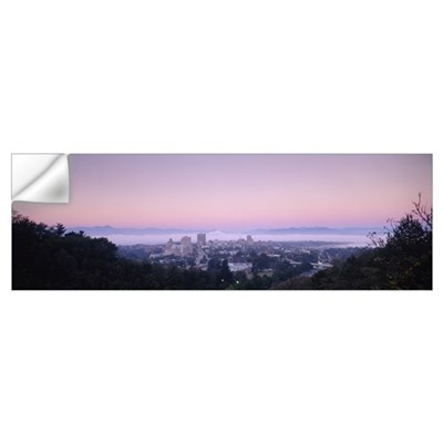 City at morning, Asheville, Buncombe County, North Wall Decal