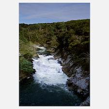 River passing through a forest, L'Eau d'Or Falls,