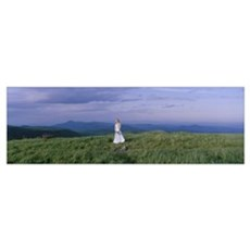 Bride standing in a field, Black Balsam Knob, Blac Poster