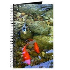 Koi Pond Journal